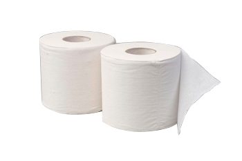 PH GREEN RECYCLED UNWRAPPED TOILET ROLLS 1ply/850s/48ctn