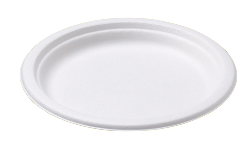 BIO FIBRE LARGE DINNER PLATE 240mm 50pk