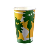 COLD CUP PAPER 16oz/488ml DAINTREE 50SLV