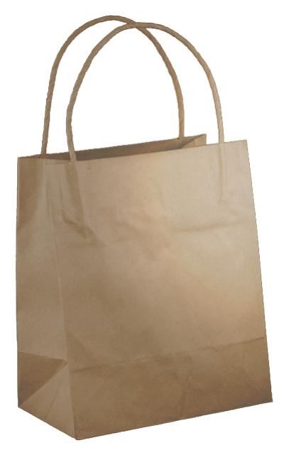 BROWN KRAFT BAG TODDLER BT 200 x 170 x 100 500CTN