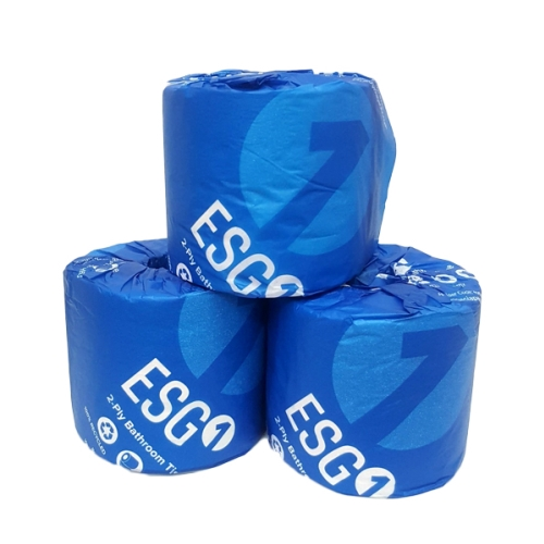ESG ECOSOFT RECYCLED TOILET ROLLS 2Ply 400s 48ctn